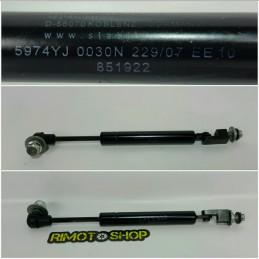 APRILIA MANA 850 pistone bauletto-AM8-3694.1X-Aprilia