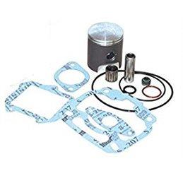 Kit revisione cilindro Rotax 122 Aprilia rs125