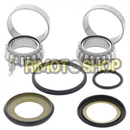 Beta RR 520 10-11 Kit revisione cuscinetti di