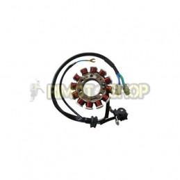 DERBI Senda 125 R 4T 04-07 STATORE-174502-SGR