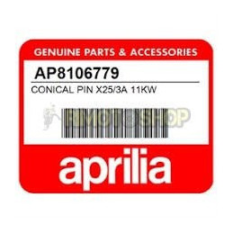 SPILLO CONICAL PIN X25/3A CARBURETOR APRILIA RS RX MX SX 125 PHBH 28BD