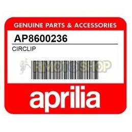 SEEGER APRILIA RS 250-AP8600236-Aprilia