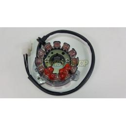 Statore accensione HUSQVARNA WRE 125 07-2012-31146532-DUCATI