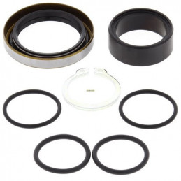 KIT REVISIONE ALBERO PIGNONE KTM 250 SX 17-WY-25-4001-WRP