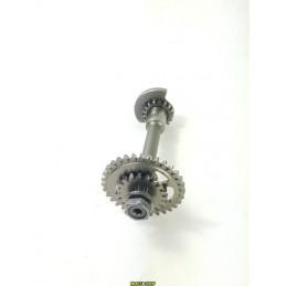 Albero ingranaggio bilanciamento motore HONDA CRF 250 R 04-09