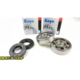 KIT Paraolio e cuscinetti di banco Suzuki RM 65 03-05 koyo
