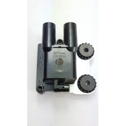 Coil ignition 38040101C...