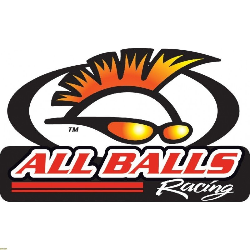 All Balls ricambi moto